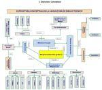 estructura conceptual plan